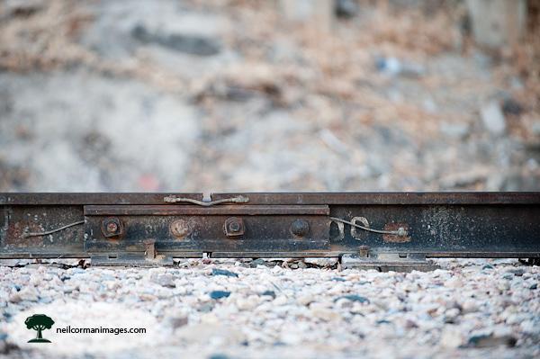 Along the Train Tracks