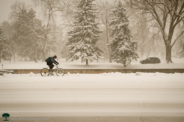 Riding a Bicycle in the Snow