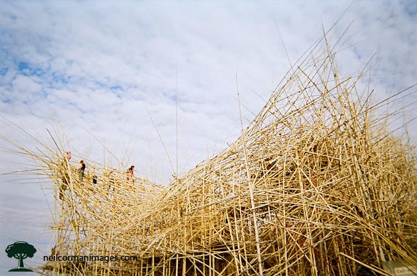 Big Bambu New York City