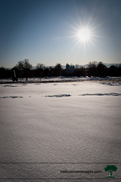 Snow in Chessman Park