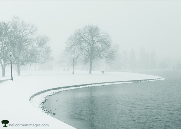 Winter Morning in City Park - Denver Holiday Card