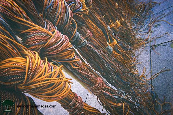 Tying Together Big Bambu