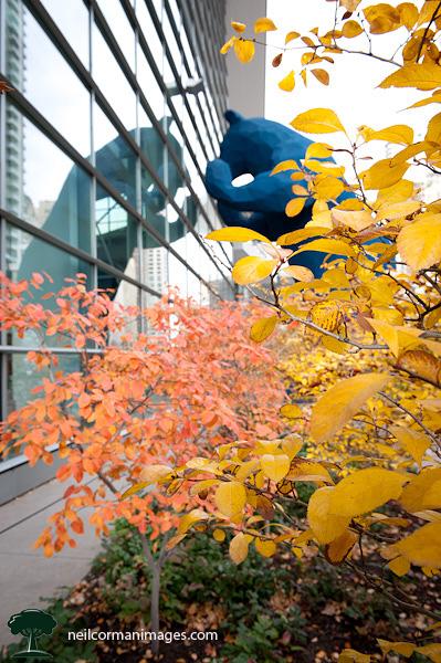 Big Blue Bear at Colorado Convention Center