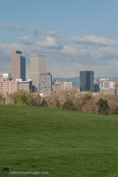 Denver Skyline from City Park in the Spring