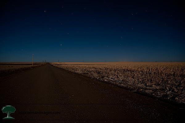Full Moon on the Plains