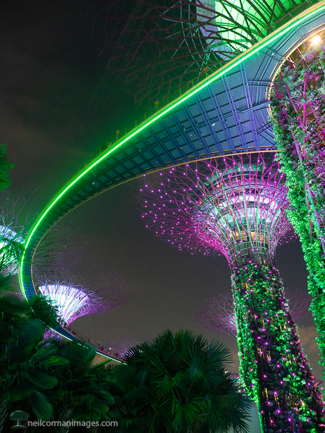 Evening at Gardens by the Bay in Singapore