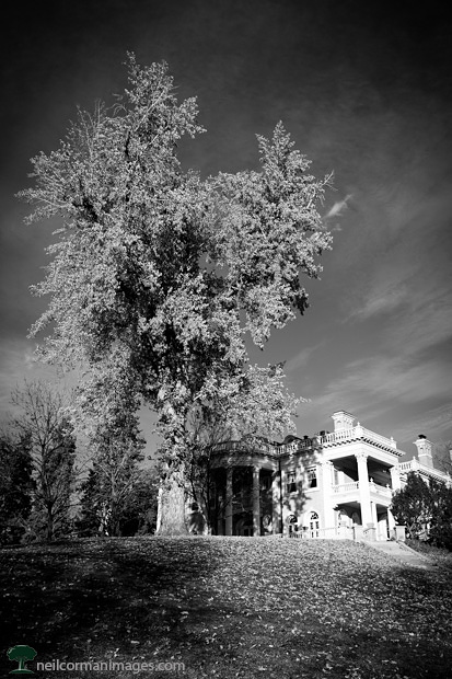 Grant Humphreys Mansion in Denver Colorado