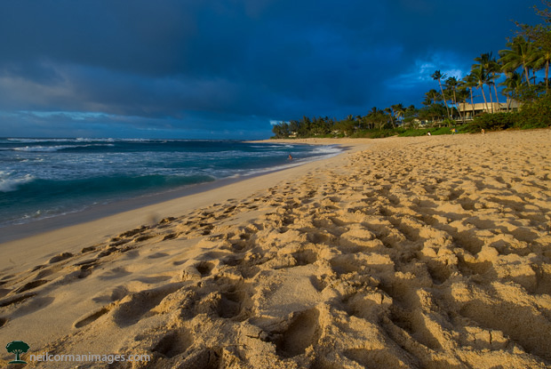 Hawaii Beach on an afternoon in January