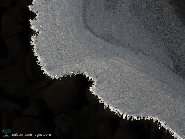 Ice Above Mendenhall Lake