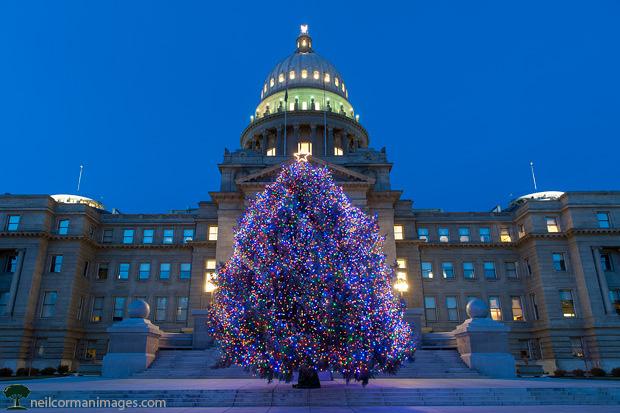 Christmas Tree at Idaho State Capitol
