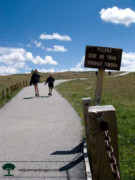 Path at Independence Pass near Aspen