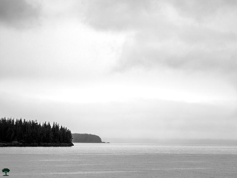 Outside Wrangell Alaska on the Water