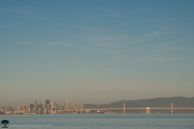 San Francisco City Skyline from Bay Farm Island