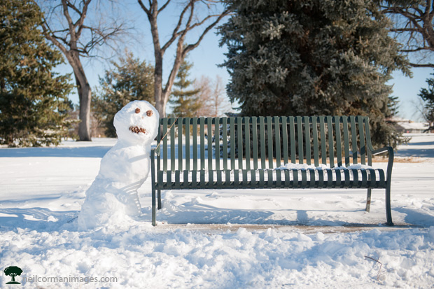 Snowman on a Park Bench in Denver