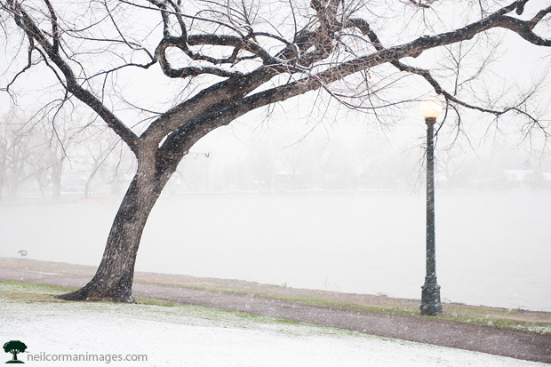 Snowy May Day in Washington Park