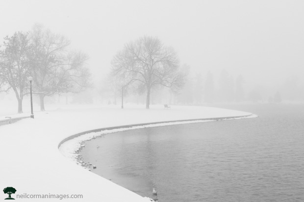 Winter Morning in City Park, Denver