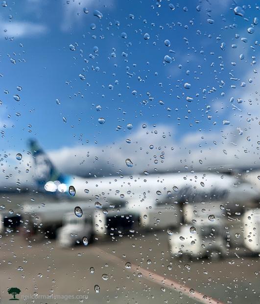 Sunshine on a Rainy Day - Aviation