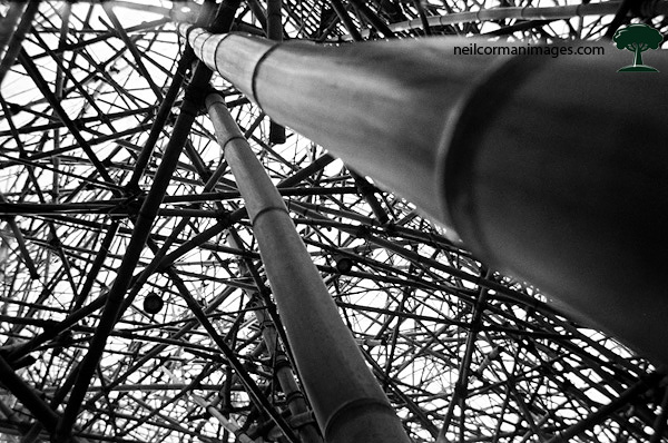 Under Big Bambu - New York City