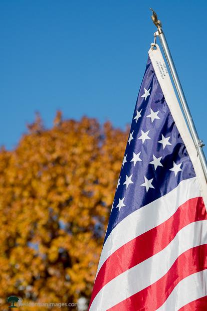 Veterans Day Parade in Denver