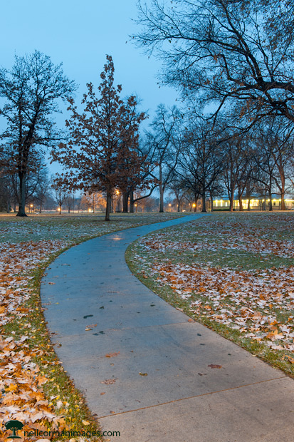 Washington Park in the Evening - Denver