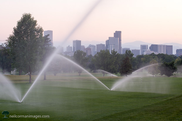 Sprinklers in Park with Denver Skyline