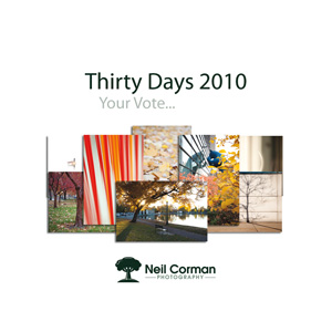 Thirty Days 2010. Your Vote...