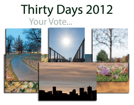 Thirty Days 2012. Your Vote